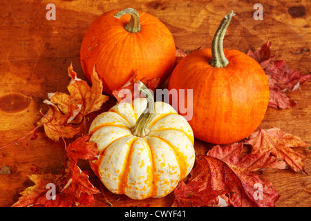 Fall pumpkin and decorative squash with autumn leaves on a wooden table. - Stock Photo