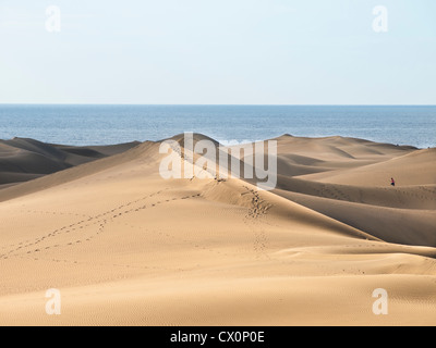 Dunes de Maspalomas is a nature reserve in the middle of tourist resorts in Gran Canaria, here desert, sand dune, - Stock Photo