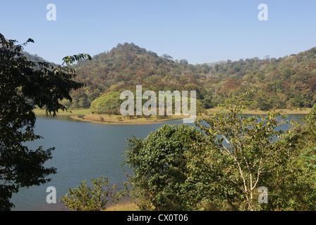 Elk201-3804 India, Kerala, Periyar National Park, park landscape - Stock Photo