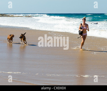 Young woman and dogs running on beach at Sunshine Coast, Queensland, Australia - Stock Photo