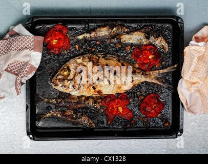 Roasted dorade fish meal on tray - Stock Photo