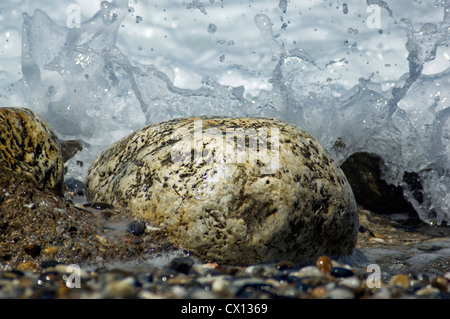 Close-up of a big pebble on a pebble beach with a wave splashing against it - Stock Photo