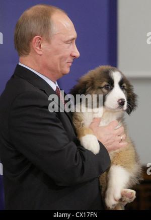 ITAR-TASS: SOFIA, BULGARIA. NOVEMBER 13, 2010. Russian Prime Minister Vladimir Putin holds the puppy, a present - Stock Photo