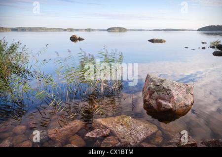 Coastal landscape with sedge and stones, Saimaa lake, Karelia, Finland - Stock Photo