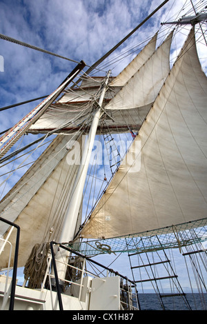 Sails, masts and rigging on board of the tall ship / barquentine Antigua sailing with tourists towards Svalbard, - Stock Photo
