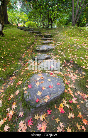 Fallen Japanese Maple Tree Leaves on Stone Steps and Moss in Autumn - Stock Photo