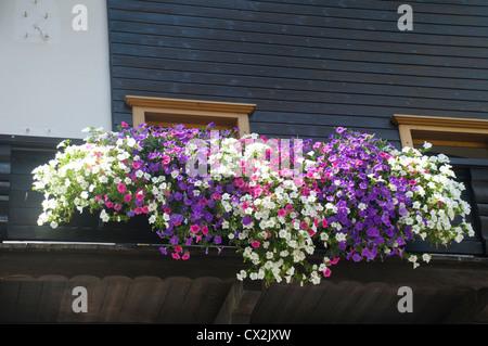 Austria, Tyrol, Zillertal, Mayrhofen. Flowers in a windowsill - Stock Photo