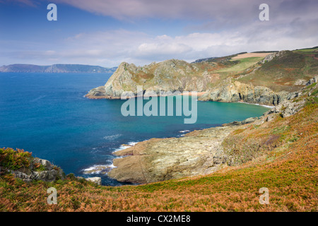 Looking towards Elender Cove and Gammon Head from the South West Coast Path footpath near Prawle Point, South Hams, - Stock Photo
