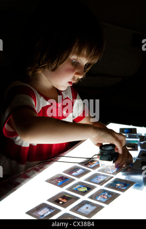 Boy looking at 35mm slides on light box. - Stock Photo