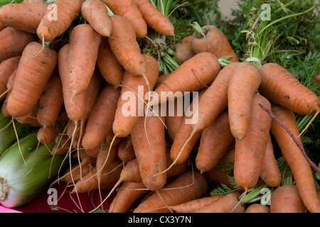 Freshly picked organic carrots for sale at the Farmers Market in Monterey. - Stock Photo