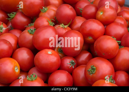 Fresh locally grown tomatoes available at the Monterey Farmers Market. - Stock Photo