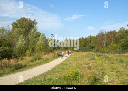 bicycle track, Boltenhagen, Baltic Sea Coast, Mecklenburg-West Pomerania, Germany - Stock Photo