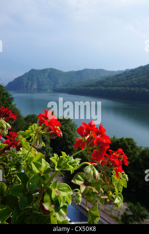 Panorama view of the Vidraru lake in Fagaras mountains of Romania - Stock Photo