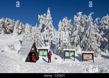 Tourists at shelter and frozen snow covered spruce trees in winter at Brocken, Blocksberg in the Harz National Park, - Stock Photo