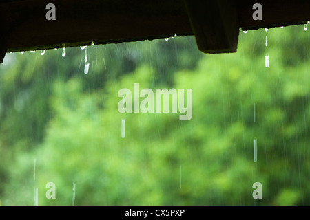 Raindrops from the roof - Stock Photo