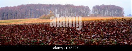 Agriculture landscape with plowed field by city Pruem, Rheinland-Pfalz / Germany. Image stitched - Stock Photo