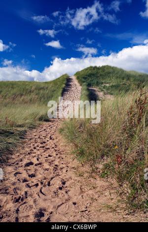 SAND DUNE, ABERLADY BAY, ABERLADY , EAST LOTHIAN, FOOTPATH - Stock Photo