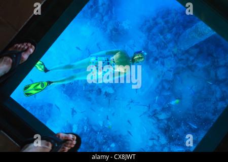 Snorkeler under the glass floor in a room of bora bora nui resort and spa;Bora bora island, south pacific - Stock Photo