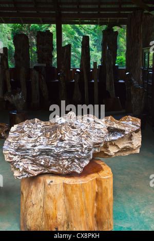 PETRIFIED WOOD exhibit at the NATIONAL KANDAWGYI GARDENS in PYIN U LWIN also known as MAYMYO - MYANMAR - Stock Photo
