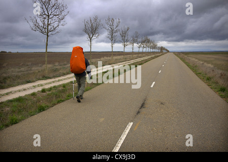 A pilgrim walking the camino to Santiago de Compostela, near Sahagun in Spain. - Stock Photo