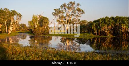 Yellow Water billabong and wetland, Kakadu National Park, Northern Territory - Stock Photo