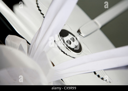 Detail of Bentley motif on wedding car with white ribbons - Stock Photo