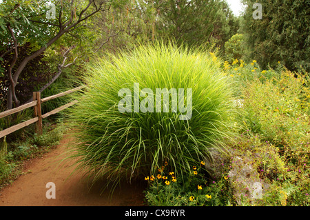 botanical garden gardens albuquerque alb alq new mexico nm close up ...