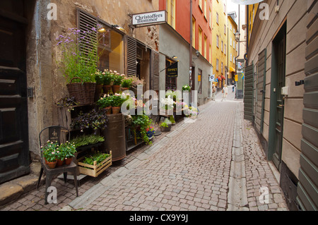 Flower shop Gamla Stan the old town Stockholm Sweden Europe - Stock Photo