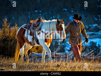 Cowboy leading his horse on a ranch in northeastern Wyoming - Stock Photo