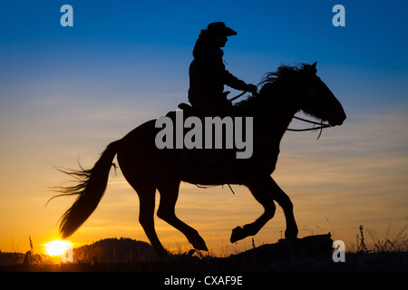 Cowgirl on riding across a ridge at sunrise on a ranch in northeastern Wyoming - Stock Photo