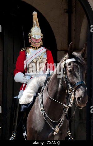Life Guard one of the Household Cavalry Regiments on sentry duty, London, England, United Kingdom, Europe - Stock Photo
