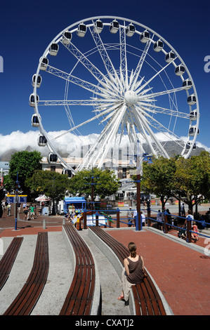 Ferris wheel, the Waterfront, Cape Town, South Africa, Africa - Stock Photo