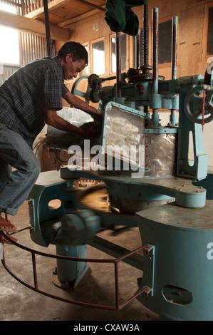 Lwan Tea factory, Pokhara, Annapurna region, Nepal, Asia - Stock Photo