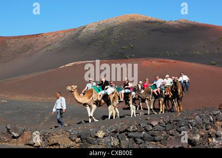 Dromedary ride on slopes of Timanfaya mountain, Timanfaya National Park, Lanzarote, Canary Islands, Spain, Europe - Stock Photo