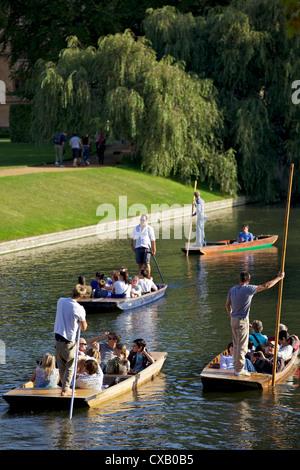 Punting on The Backs, River Cam, Clare College, Cambridge, Cambridgeshire, England, United Kingdom, Europe - Stock Photo