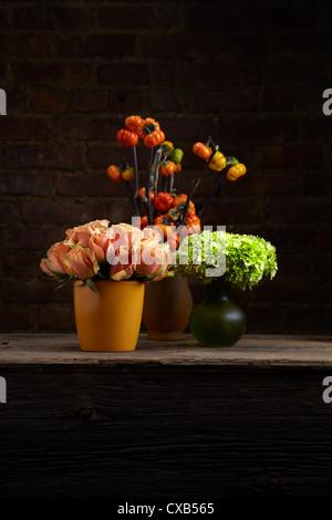 A trio of Tangelic Rose, Hydrangea and Stick Pumpkin Flower Arrangements - Stock Photo