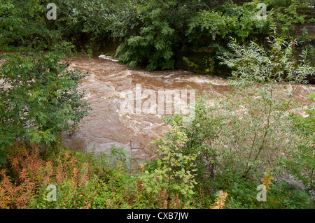 Rising river level due to heavy rainfall and storms,on the Gala water in Scotland - Stock Photo