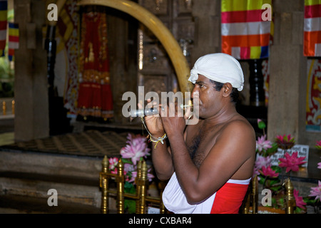 Man playing Horanewa, Tooth Sanctuary, Temple of the Tooth Relic, Kandy, Sri Lanka, Asia - Stock Photo