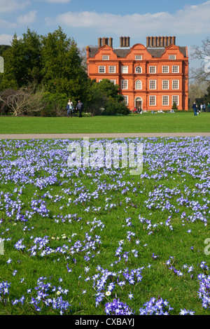 Glory of the Snow flowers in lawns near Kew Palace in spring, Royal Botanic Gardens, Kew, UNESCO World Heritage - Stock Photo