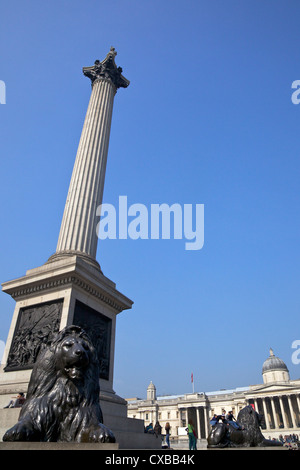 Bronze lion statues by Sir Edwin Landseer, Nelson's Column and National Gallery, Trafalgar Square, London, England - Stock Photo