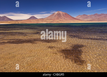 Elk198-2192 Chile, San Pedro Atacama, Miscanti Minques Reserve, Lago Minques lake - Stock Photo