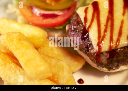 classic burger and fries with salad garnish - Stock Photo