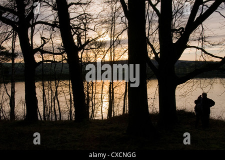 Young couple (cuddling) silhouetted at sunset against dramatic golden sky looking out through trees over scenic - Stock Photo