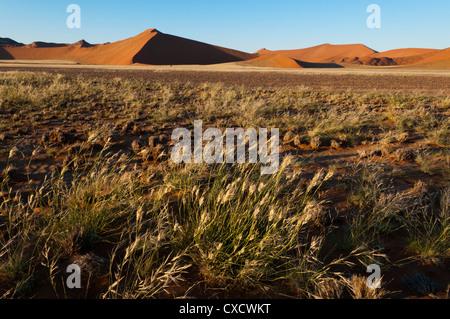 Sand dunes, Sossusvlei, Namib Naukluft Park, Namib Desert, Namibia, Africa - Stock Photo