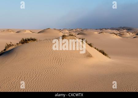 Sand dunes, Skeleton Coast National Park, Namibia, Africa - Stock Photo