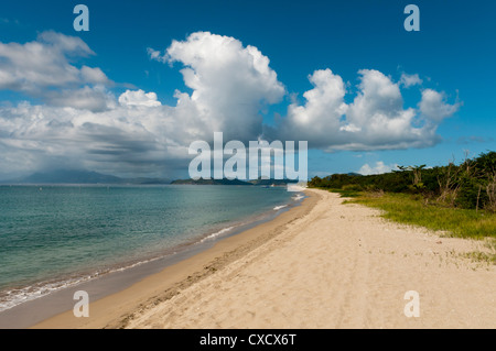 Pinney's beach, Nevis, St. Kitts and Nevis, West Indies, Caribbean, Central America - Stock Photo