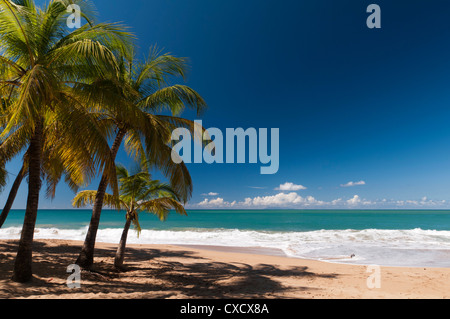La Perle Beach, Deshaies, Basse-Terre, Guadeloupe, French Caribbean, France, West Indies, Central America - Stock Photo