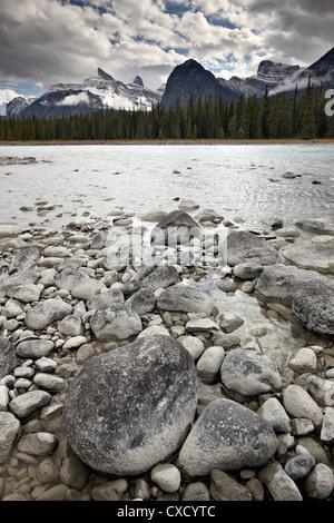 Athabasca River, Jasper National Park, UNESCO World Heritage Site, Alberta, Canada, North America - Stock Photo