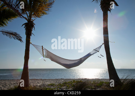 Woman in a hammock on the beach, Florida, United States of America, North America - Stock Photo