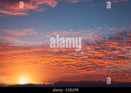 Red sky at sunrise over Atlantic Ocean, view from Miami Beach, Florida, United States of America, North America - Stock Photo